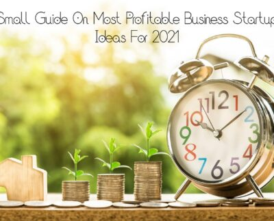 Small guide On Most Profitable Business Startup Ideas For 2021